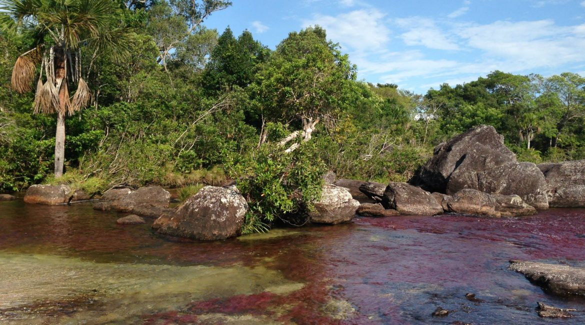 Caño Cristales 1 by ColombiaDeFiesta
